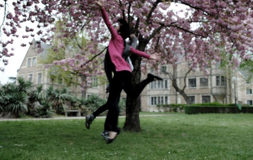 1000px-Cherry_Tree_leap